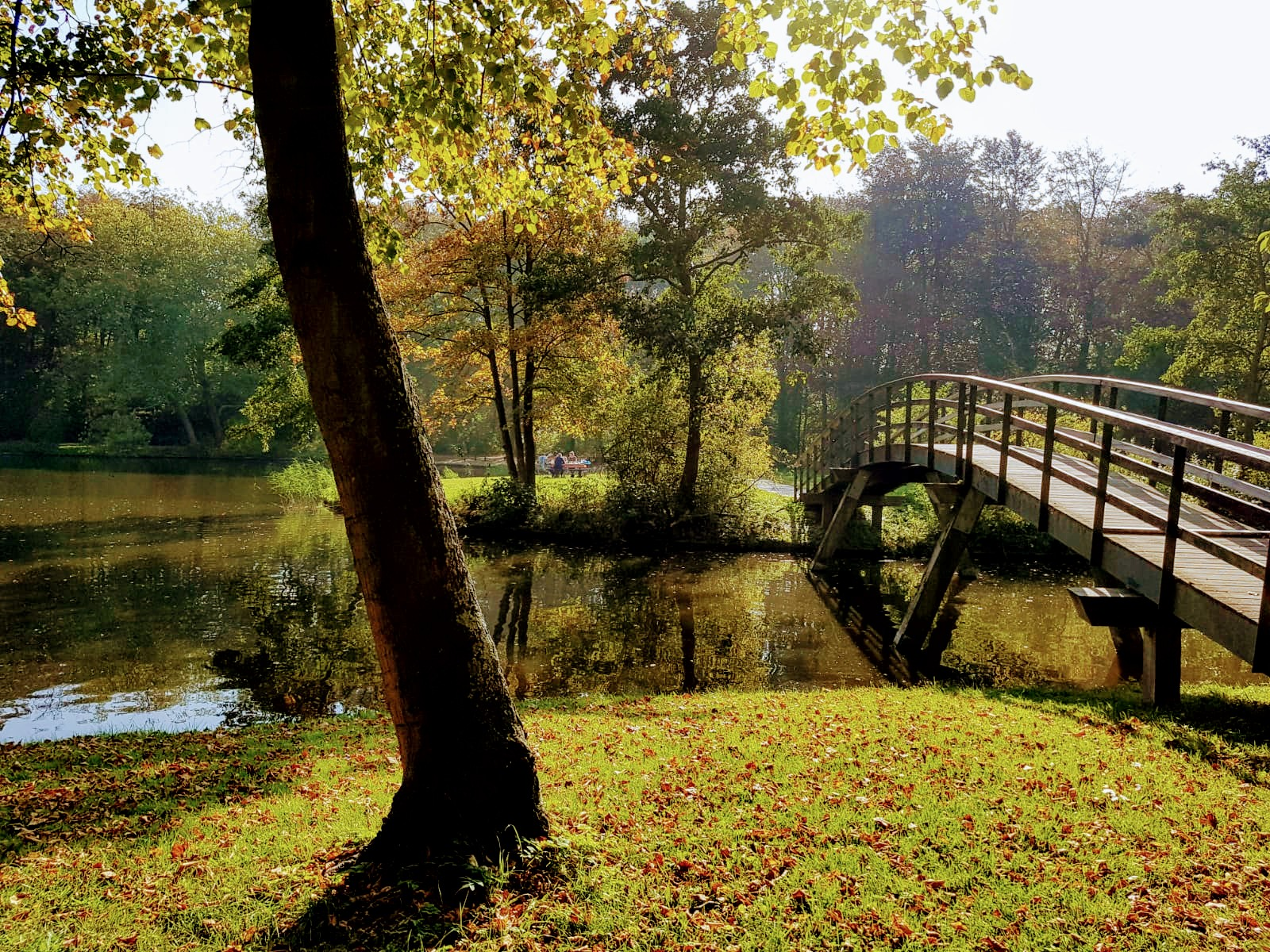 autumn-tcm
